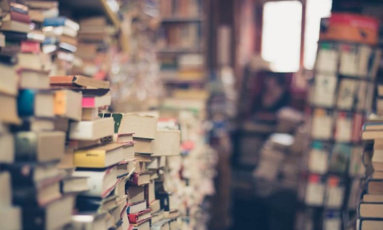 Bøger Om Aktier